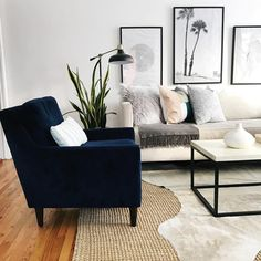 """689 Likes, 18 Comments - K I M B E R L Y (@southerndrawldecor) on Instagram: """"I am currently obsessing over this navy blue velvet @westelm chair in @crystalanninteriors living…"""""""