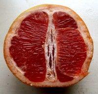 Ontbijten met grapefruit; heel gezond.