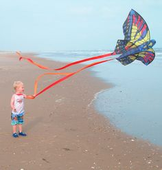 Custom Kites for Kids. Go Fly A Kite, Kite Flying, Flying Birds, Kite Store, Kitty Hawk Kites, Kites For Kids, Cute Posts, Before Midnight, Globes