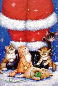"""Kittens with Papai Noel"""