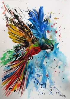 Colorful Watercolor Paintings | Colourful Parrot watercolor by fiona-clarke.com | Art | Pinterest ...