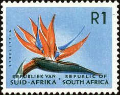 Stamp: Strelitzia (South Africa) (Definitive Issue - Decimal Issue) Mi:ZA 299,Sn:ZA 266,Yt:ZA 260,Sg:ZA 210 Union Of South Africa, South Afrika, Postage Stamp Design, Vacation Scrapbook, Vintage Stamps, African History, Stamp Collecting, Flower Stamp, Mailbox