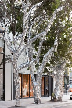 miami design district's palm trees get dressed up in tinsel during art week Snow In Florida, Street Installation, Tinsel Tree, Disco Ball, Disco Party, Party Party, Party Time, Winter Trees, Stage Design