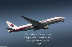 """""""Hommage"""" au vol MH17 et aux 295 personnes à bord"""