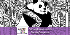1000 images about coloring pages on pinterest coloring Jumbo coloring books for adults