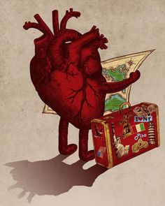 Travel where your heart takes you. ❣Julianne McPeters❣ no pin limits Heart Art, Love Heart, Heart Illustration, Medical Illustration, Anatomical Heart, Heart Images, Human Heart, Anatomy Art, Surreal Art