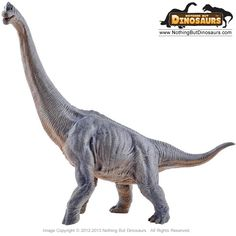 Papo Museum Quality Realistic Brachiosaurus Dinosaur Toy Replica Model Figure Collectible | Nothing But Dinosaurs