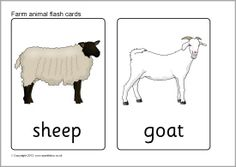 Farm animal flash cards (SB7730) - SparkleBox