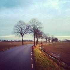 Swedish countryside: Bicycling toward Allerum yesterday in Helsingborg, Sweden. #bicycle #sweden #skåne