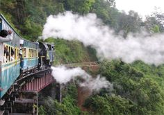 Riding the train from the north to the south of India!   I read 80 TRAINS AROUND INDIA and fell in love!