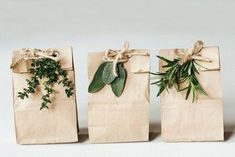 Love this the look of natural packaging Body care packaging ideas for pop up shop