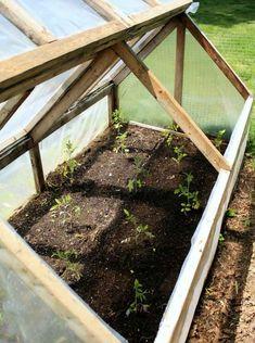 serre jardin diy bois verre pratique fonctionnelle idée