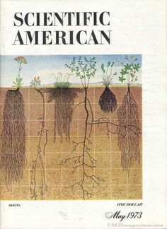 Scientific American - May 1973