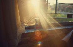 Un rayo de sol perfecto para disfrutar de Lipton.