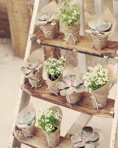 Pretty favors ideas #suculent #favors #wedding #rustic #ideas #decoration #party #eventplanner by memories.builders