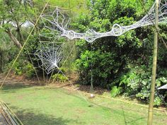 Bamboo/Web Sculpture