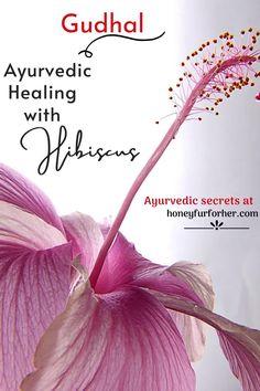 Gudhal (Hibiscus) Flower, Powder, Uses, Benefits, For Hair and Skin, Properties, Side Effects, Hibiscus Oil Mask Benefits #ayurveda #ayurvedalife  #hibiscusforhairgrowth #hibiscusforskin #healingherbs #medicinalherbs