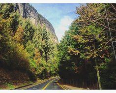 Camino 7 lagos Chile