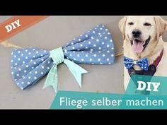DIY Hundehalsband selber machen | Hund Halstuch Halsband nähen Nähanleitung kostenlos - YouTube