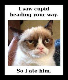 grumpy cat valentines day memes valentines day i saw cupid heading your way - Grumpy Cat Valentine