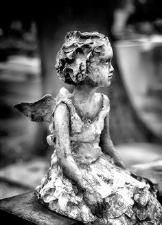 angel statue in a cemetery in France (love old cemeteries)