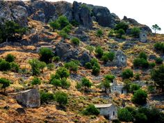 Steep hill with small chapels and trees. Abandoned town of Paleohora, Aegina island, Saronic, Greece Disney Silhouettes, Tree Carving, Greek Islands, More Photos, Curb Appeal, Dream Cars, Grand Canyon, Greece, Exotic