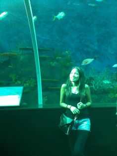 Snap ;) Sea Aquarium SINGAPORE