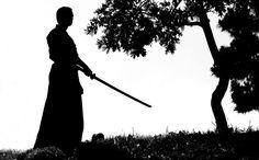 Samurai and tree by Dendrit, via Flickr