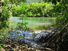 Australia a country of endless possibilities - Cape trib