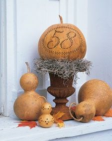 Gourds by Number | Step-by-Step | DIY Craft How To's and Instructions| Martha Stewart