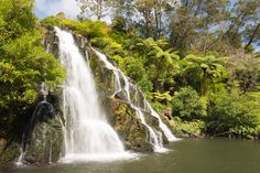 Coromandel adventures offer guided bus tours & shuttle service to Coromandel's best attractions, Whitianga, walking tracks, Cathedral Cove & Hot Water Beach. Stuff To Do, Things To Do, New Zealand, Tours, Adventure, Waterfalls, Heart, Places, Bucket