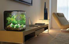 The Life Aquatic: Relaxing & Compact Hi-Tech Aquariums #aquariums