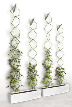 Vertical garden design - 60 Marvelous Indoor Vines and Climbing Plants Decorations – Vertical garden design Garden Ideas To Make, Diy Garden, Garden Trellis, Garden Projects, Garden Landscaping, Wall Trellis, Trellis Fence, Landscaping Ideas, Diy Trellis
