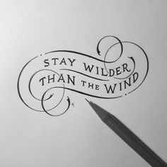 Stay Wilder Than The Wind~~
