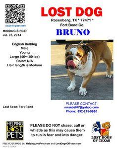 #lostdog #Rosenberg #TX