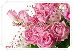 Happy Brithday, Name Day, Birthday Greetings, Birthdays, Names, Rose, Flowers, Plants, Google