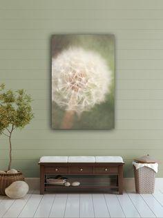 Little Wishes Photographic Print Dandelion by artbycmcdonald