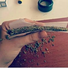 Isn`t it awesome?    #weed #cannabis #joint #highlife #marijuana #ganja #maryjane #blunt #sohigh #kush #haze #hash #smokeweed  #stonernation #gethigh #medicalmarijuana #rawweed  #rollitup #takeahit #dope #stoned #hightimes