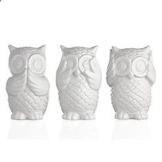 3 Wise Owls from Z Gallerie- spray paint tranquility color and put on shelf in spare bathroom Owl Home Decor, White Home Decor, Owls Decor, Owl Bathroom Decor, Owl Kitchen Decor, Owl Decorations, Backgrounds White, Home Decor Accessories, Decorative Accessories