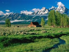 One of my favorite National Parks, Grand Teton (which means big tits). Nate wants to live on a buffalo ranch in Wyoming someday :)