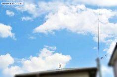 歩いてたら、後方からグライディングしてきてワッサワッサと誰かさんの屋根の上へ。 白鷺(サギ) 嘘やろ?って3度見くらいしてしまったので遠いけど撮ってみた。白鷺は縁起がいい鳥らしいです。 #鳥 #シラサギ #空 #bluesky