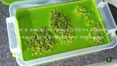Похожее изображение How To Dry Basil, Herbs, Home Decor, Decoration Home, Room Decor, Herb, Home Interior Design, Home Decoration, Interior Design