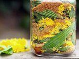 Herb Garden, Home And Garden, My Secret Garden, Natural Medicine, Kraut, Pickles, Cucumber, Smoothies, Remedies