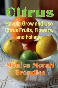 Citrus: How to Grow and Use Citrus Fruits, Flowers, and Foliage by Monica Brandies, http://www.amazon.com/dp/B00GT5MT2C/ref=cm_sw_r_pi_dp_f93Lsb1PTD85N