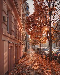 "citybestviews: ""#Berlin  #Germany  .. Photo by: @georgrehm  .. #Facts  Berlin is…"