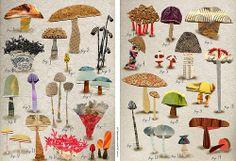 AVSM: collecting, collage by Susan Farrington (susanf_pp_mushroomsAandB_col_no bkg)