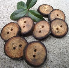 Spalted Cherry Wood Buttons - 8 Wooden Tree Branch Buttons with Bark - 1 1/4 inches, 2 holes