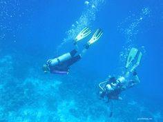Scuba Divers on Bonaire | by goinformed.net