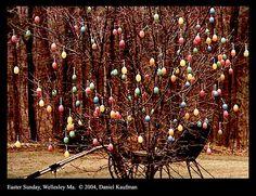 Easter!