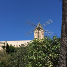 Remembering Palma de Mallorca!  #travel #mallorca #palmademallorca #carnivalcruise #carnivalvista #carnivalfamilies #foodieseekerfamily #blogger #travelblog #foodblog